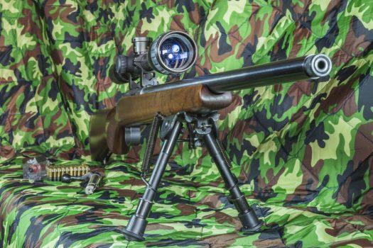 22 LR carbine Bolt action rifle