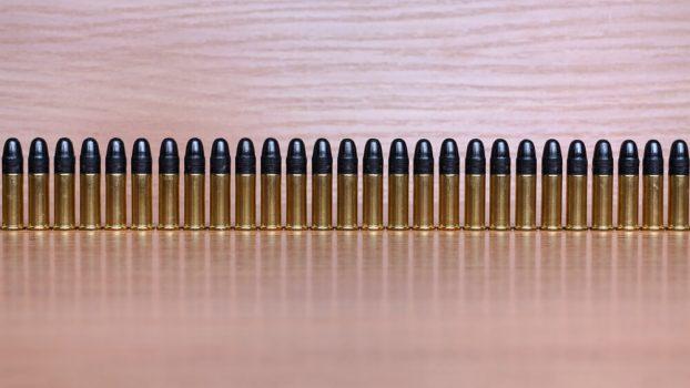 Bullets 22lr