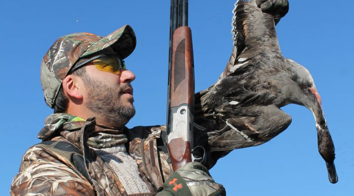 Best Over-Under Shotguns for upland hunting