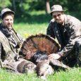 tips hunting turkey