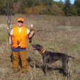 top 10 hunting dog breeds (1)